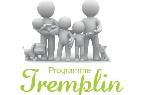 Visuel programme tremplin Actualités