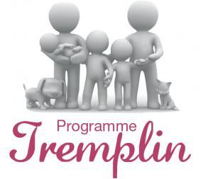 Tremplin visuel famille programme famille bonhommes