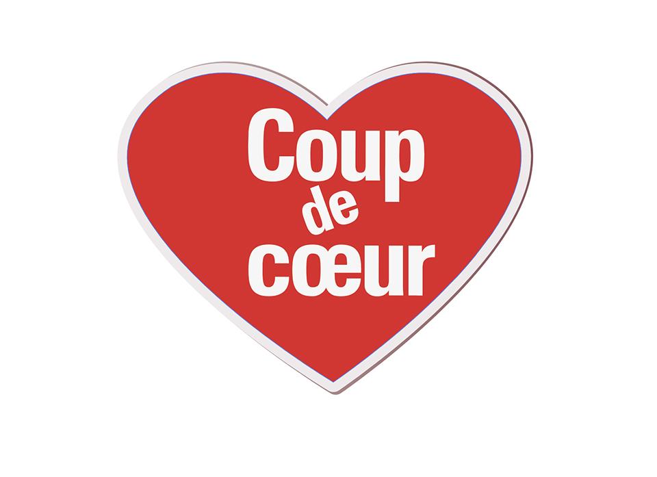 Logo coup de cœur Médiathèque